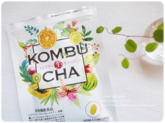 kombucha14